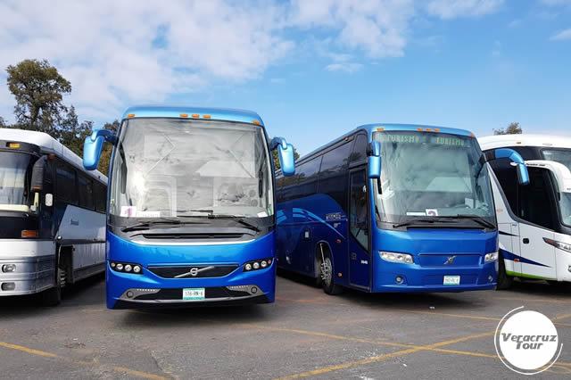 Servicio De Transportación Ejecutiva En Veracruz